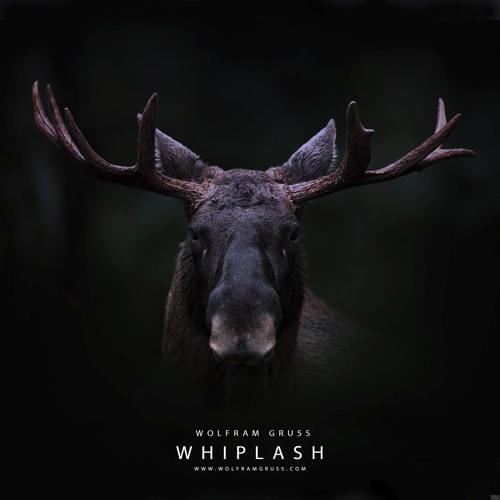 Whiplash (DJI WRC Finland 2017 Soundtrack)