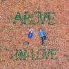 Above - In Love ft. Roarke & lovewithme (music video in the description)
