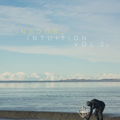 Intuition vol.2