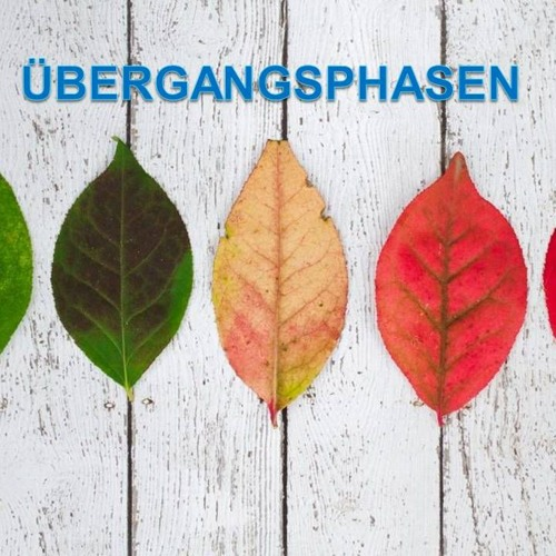 Übergangsphasen | Times of Transition