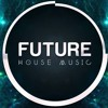 Future House Mix 2017 Vol 12