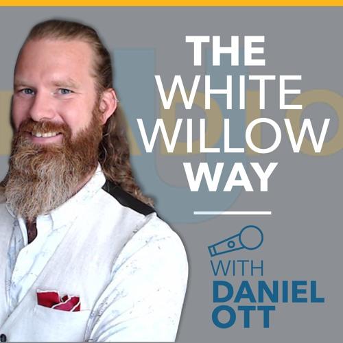 Daniel Ott -Episode 2- The psychology around the load bearing wall.