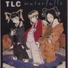TLC - Waterfalls Freestyle Rap