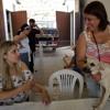 Adoção de animais superou as expectativas dos organizadores