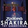 I Got No Time To Try Everything (Shakira Vs TLT)