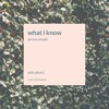 Josh McDaniel (AKA prince woods) what i know (feat. ALICE K)