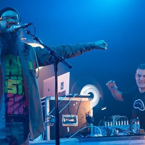 Brain Damage feat. Harrison Stafford @ Télérama Dub Festival #15 (last tune)