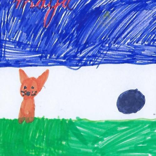 Niño de Chihuahua