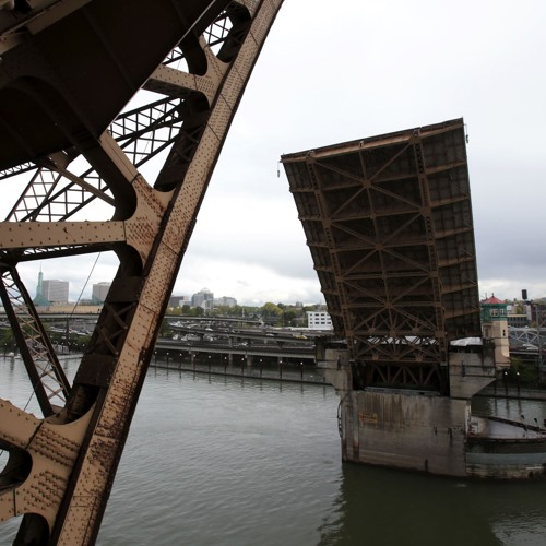 BizTribCast - Megan Neill talks about the Burnside Bridge