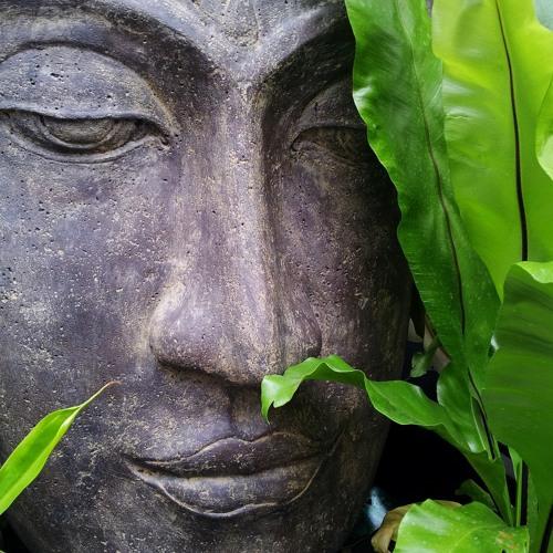 Meditasjon og aldring (Norwegian)