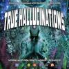 True Hallucinations 032 @ Dice Radio - May 2014 ~ Man With No Name Special