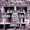 DJ Purple Rabbit Ft..Ziondread - Rastafari Style(clip) Out now on D&B compilation