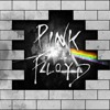 Live a CHTX  Pink Floyd - The Wall  Extrait