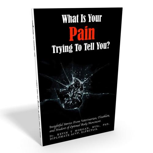Pain Friend Or Foe