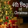 4th Day of the Twelve Days of Christmas - Debra Hill