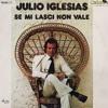 Julio Iglesias Vs. Leognano - Se Mi Lasci Non Vale (Remix)
