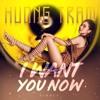 I Want You Now Remix - Hương Tràm
