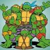 Ninja Turtle - My world
