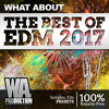 The Best Of EDM 2017   10 Packs For The Price Of 1!