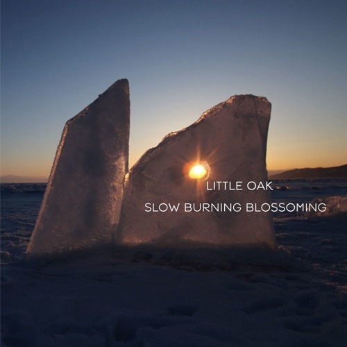 Slow Burning Blossoming