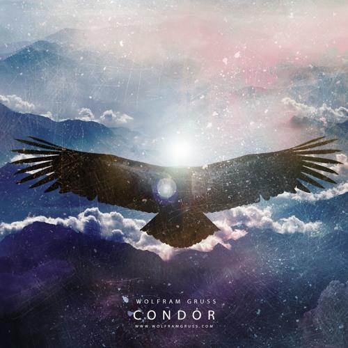 Condor (DJI WRC Argentina 2017 Soundtrack)