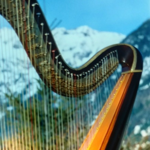 What are you doing New Years Eve, arr for harp by Mishelle Renee