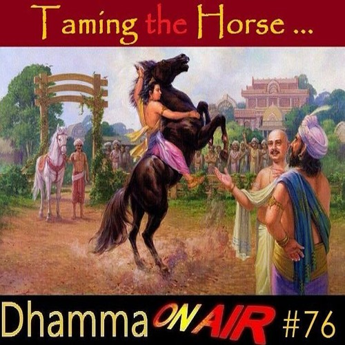 DoA#76: Taming the Horse