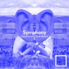 Symphony - Zara Larsson(Jirah Remix)