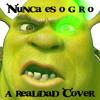 Es nunca o g r o (A Realidad Cover)