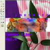рмнчитто - summer vibes vol.4 - 01 S E T U P I N I T I A L I Z A T I O N