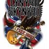 Lynyrd Skynyrd - Free Bird (acoustic cover)