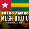 MEGA BIDJIO ( Despacito Remix )