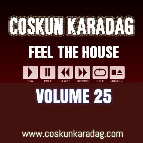 Coskun Karadag - Feel The House Vol.25 (02.01.2018) (Happy New Year)