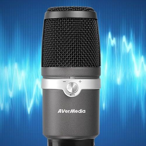 AVerMedia Godwit 310 USB Microphone - 20 cm