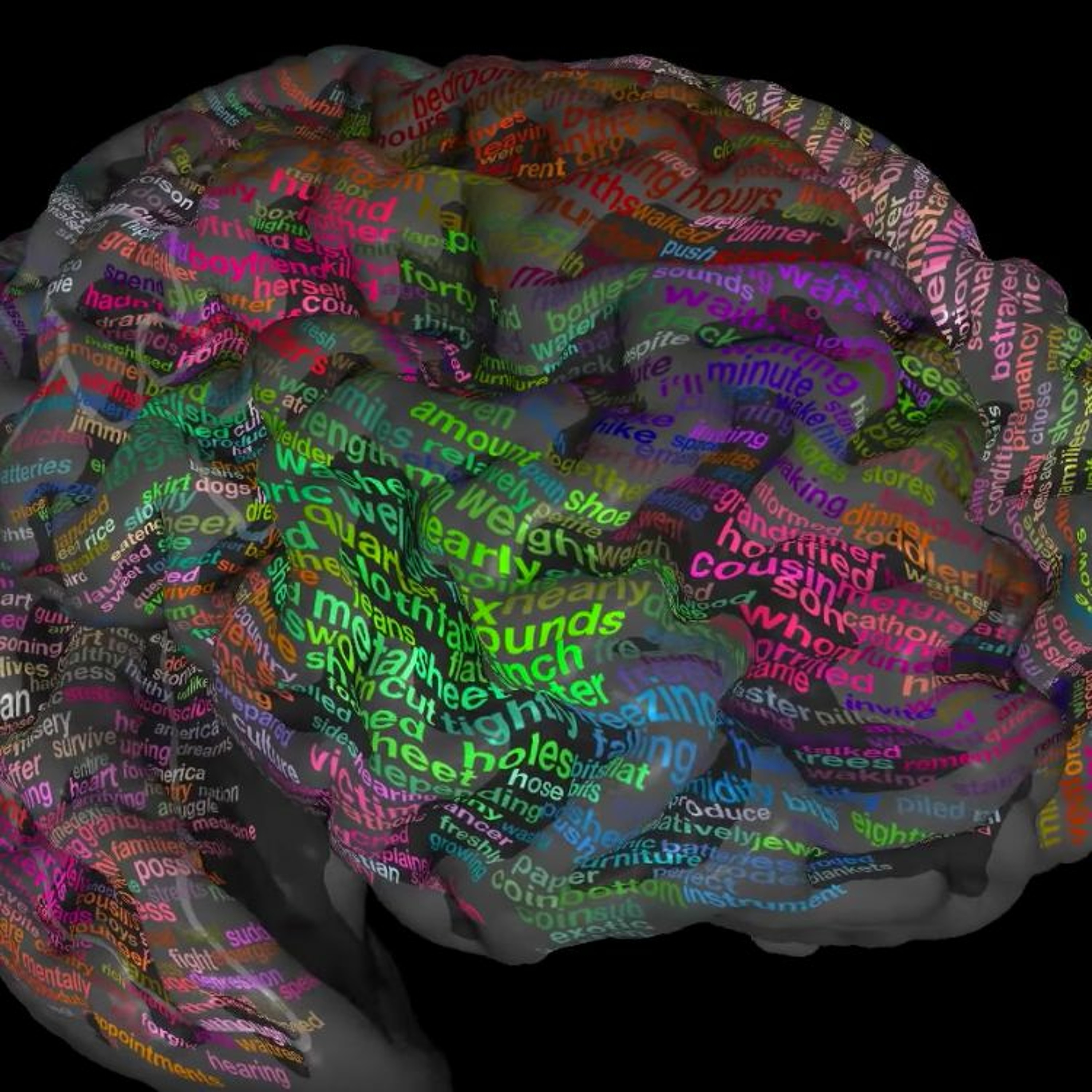 The ambition Brain Atlas Project