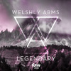 Welshly Arms - Legendary (Flrivn Remix)
