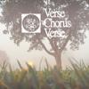 Verse Chorus Verse (Nirvana cover)