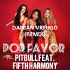 Pitbull - Por Favor ft. Fifth Harmony (Danian Vreugd Remix)