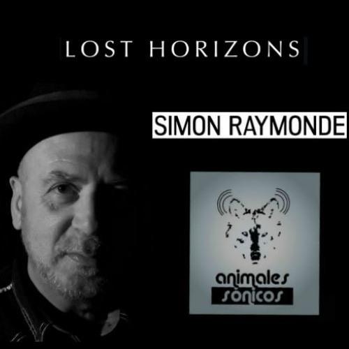 Entrevista a Simon Raymonde
