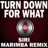 Turn down for What Marimba Siri Remix Ringtone