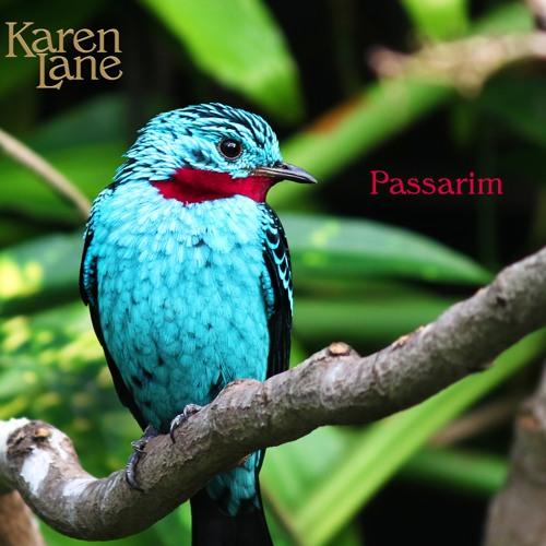 09 Passarim