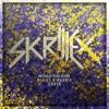 Skrillex - Would You Ever (Blaize X Raddix Cover)
