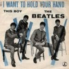 I Want To Hold Your Hand (Beatles Cover)