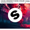 C.R.O.M.I , Rocksted Feat Rachel K Collier - Nothing Is Forever(original Mix){TALENT POOL}