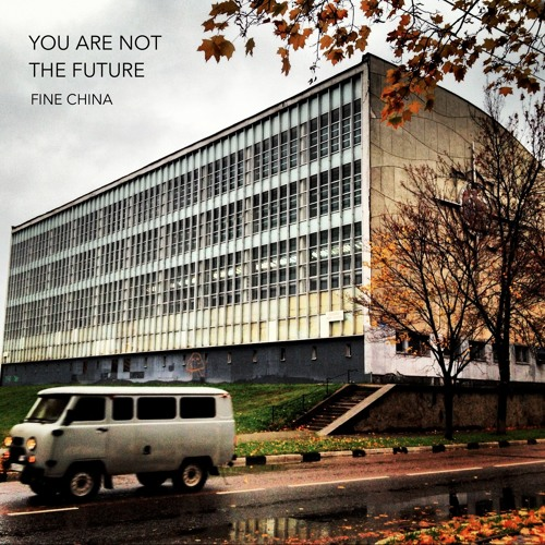 FINE CHINA - Not Thrilled