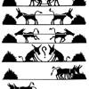 7 Tipos De Personas En Tu Negocio de Multinivel.
