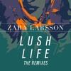 Zara Larsson - Lush Life (kokokeran Remix)