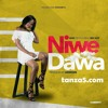 Nini Ft Nay Wa Mitego - Niwe Dawa