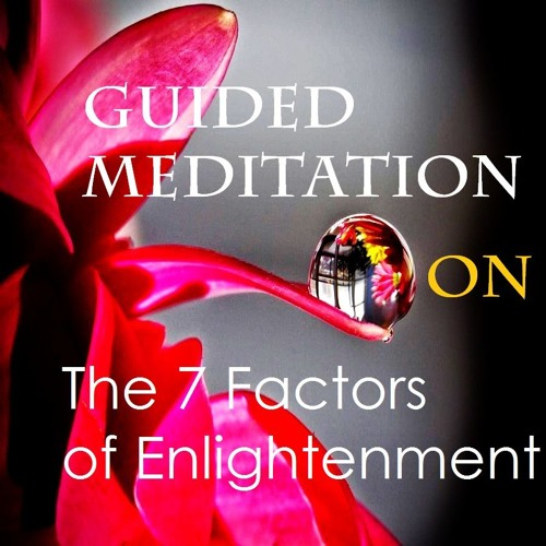 Guided Meditation on The 7 Factors of Enlightenment