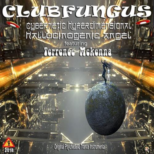 Cybernetic Hyperdimensional Hallucinogenic Angel ft. Terrence Mckenna
